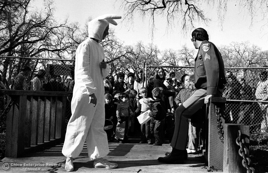 . The Easter bunny prepares for many kids to begin the search at the entrance of Caper Acres in this file photo on March 31, 1975. (Chico Enterprise-Record file photo)