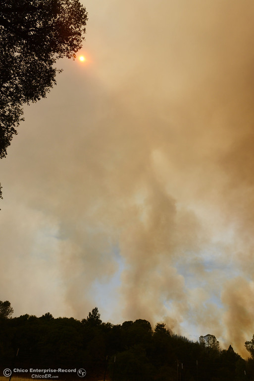 Description of . The sun shines behind the smoke west of Hurleton Swedes Flat Road in the mandatory evacuation areas around the Swedes Fire southeast of Oroville that were expanded just after noon Saturday, August 17, 2013 in Oroville, Calif.  (Jason Halley/Chico Enterprise-Record)