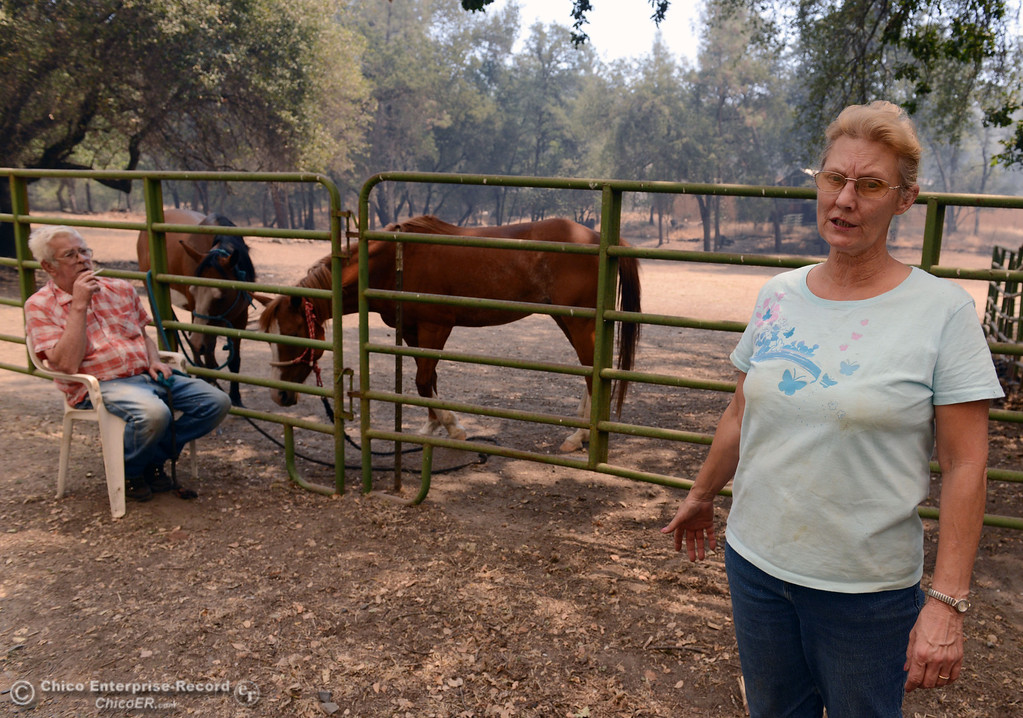 Description of . Mary Kissee (right) talks about calling North Valley Animal Disaster Group to help move her horses Honey Rose and Rainy from her property along Hurleton Swedes Flat Rd. as mandatory evacuation areas around the Swedes Fire southeast of Oroville were expanded just after noon Saturday, August 17, 2013 in Oroville, Calif. Bill Horn (left) sits waiting for emergency crews to arrive. (Jason Halley/Chico Enterprise-Record)