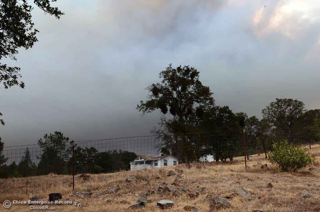 Description of . A column of smoke rises from the Swedes Fire, seen from Swedes Flat Rd., as mandatory evacuation areas around the Swedes Fire southeast of Oroville were expanded just after noon Saturday, August 17, 2013 in Oroville, Calif.  (Jason Halley/Chico Enterprise-Record)