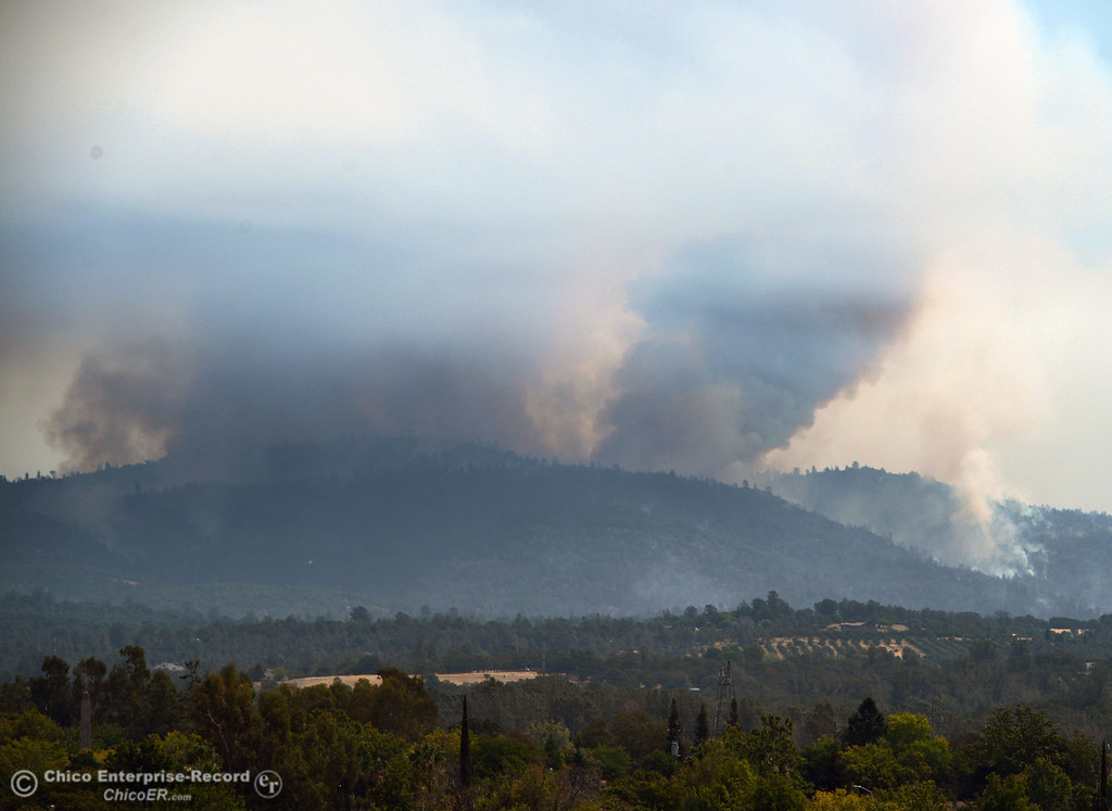 Description of . A column of smoke rises from the Swedes Fire, seen from Monte Vista Ave, as mandatory evacuation areas around the Swedes Fire southeast of Oroville were expanded just after noon Saturday, August 17, 2013 in Oroville, Calif.  (Jason Halley/Chico Enterprise-Record)