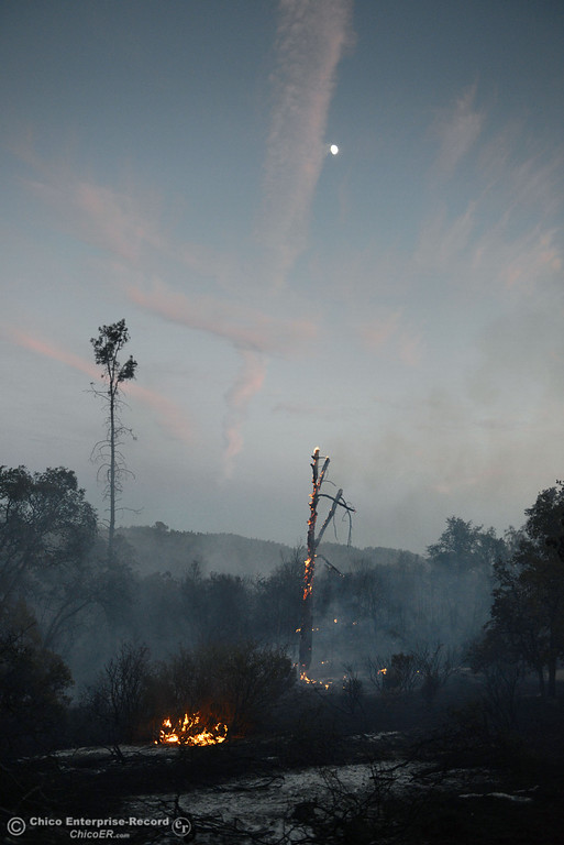 Description of . The moon begins to shine over the Swedes Fire that burned along Swedes Flat Road, in the vicinity of Chinese Wall Road, just east or Oro Bangor Highway Friday, August 16, 2013 in Oroville, Calif. Over 200 acres were burned with at least one structure lost. (Jason Halley/Chico Enterprise-Record)