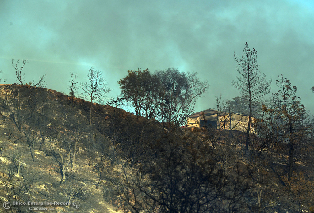 Description of . The fire burns near a structure along Chinese Wall Rd. as the Swedes Fire burned along Swedes Flat Road, in the vicinity of Chinese Wall Road, just east or Oro Bangor Highway Friday, August 16, 2013 in Oroville, Calif. Over 200 acres were burned with at least one structure lost. (Jason Halley/Chico Enterprise-Record)