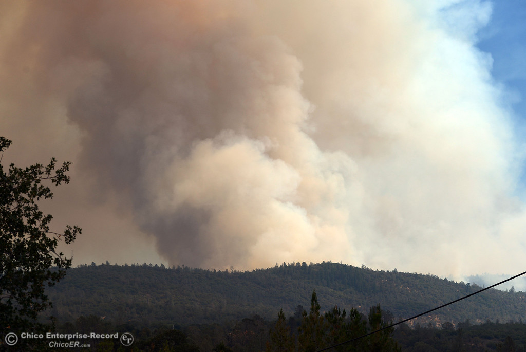 Description of . People watch the smoke from the Swedes Fire along Forbestown Road and Old Olive Highway as mandatory evacuation areas around the Swedes Fire southeast of Oroville were expanded just after noon Saturday, August 17, 2013 in Oroville, Calif.  (Jason Halley/Chico Enterprise-Record)