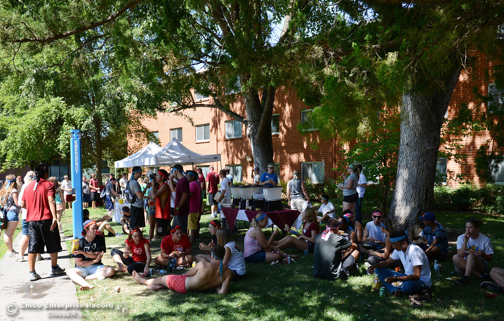 Description of . Chico State students each lunch after they played games as alternative activities to floating on the Sacramento River for Labor Day at the Wildcat Challenge event on the lawn between Lassen Hall and Sutter Hall on the Chico State Campus Saturday, August 31, 2013 in Chico, Calif.  (Jason Halley/Chico Enterprise-Record)