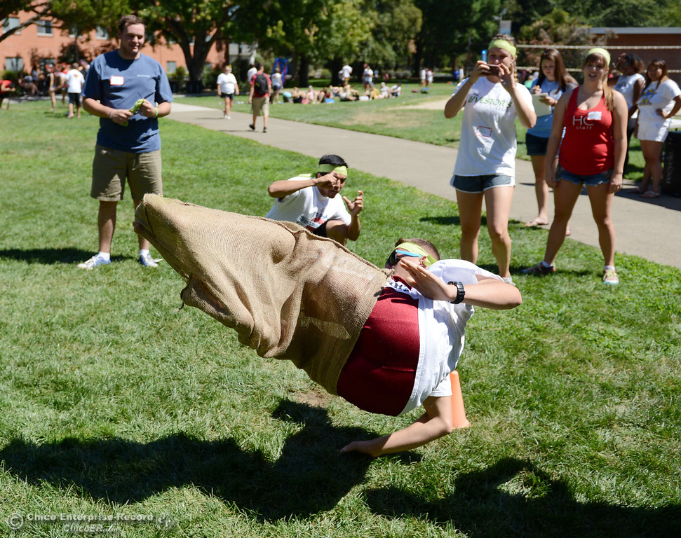 Description of . Chico State students Charlie Curtis, 19, flips to a finish a sack race as an alternative activity to floating on the Sacramento River for Labor Day at the Wildcat Challenge event on the lawn between Lassen Hall and Sutter Hall on the Chico State Campus Saturday, August 31, 2013 in Chico, Calif.  (Jason Halley/Chico Enterprise-Record)