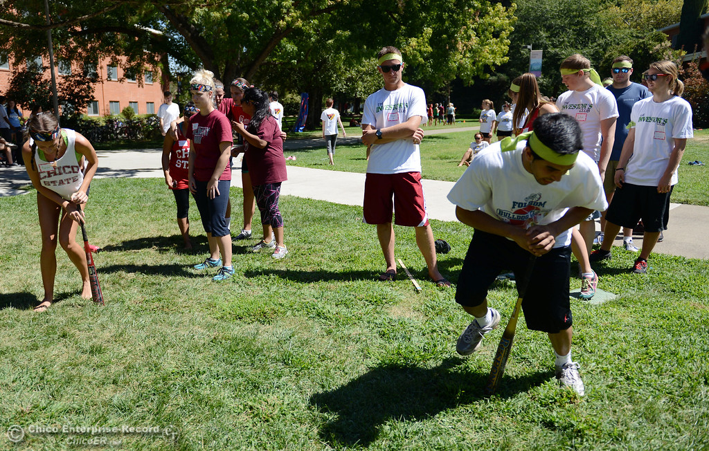 Description of . Chico State students Ashley Simon, 20 (left) races Virender Shergill, 20, (right) in a dizzy bat contest as an alternative activity to floating on the Sacramento River for Labor Day at the Wildcat Challenge event on the lawn between Lassen Hall and Sutter Hall on the Chico State Campus Saturday, August 31, 2013 in Chico, Calif.  (Jason Halley/Chico Enterprise-Record)