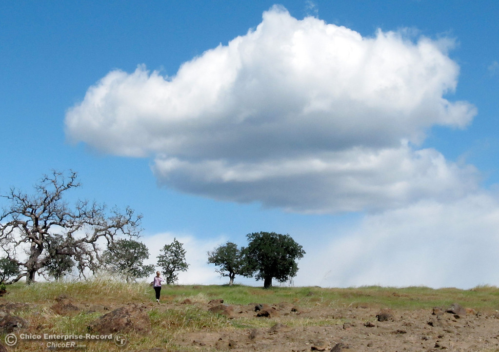 Description of . Roxanne Squires, of Chico, hikes beneath puffy clouds above the North Rim Trail in upper Bidwell Park on April 15, 2013.  (Bill Husa/Staff Photo)