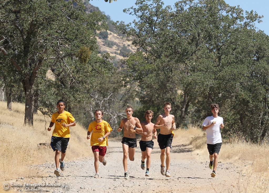 Description of . Members of the Chico High cross country team run in upper Bidwell Park on July 27, 2012. (Bill Husa/Chico Enterprise-Record)