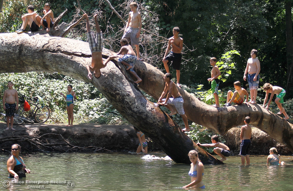 Description of . People flock to a local swimming hole along Big Chico Creek upstream from Sycamore Pool in lower Bidwell Park to escape triple digit temperatures on August 1, 2012. (Bill Husa/Chico Enterprise-Record)
