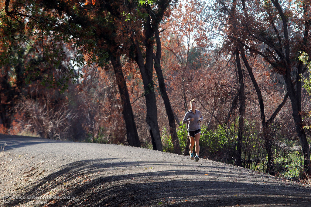 Description of . A woman runs across the levee in near Hooker Oak in Bidwell Park on November 1, 2012 in Chico, Calif. (Jason Halley /Chico Enterprise-Record)