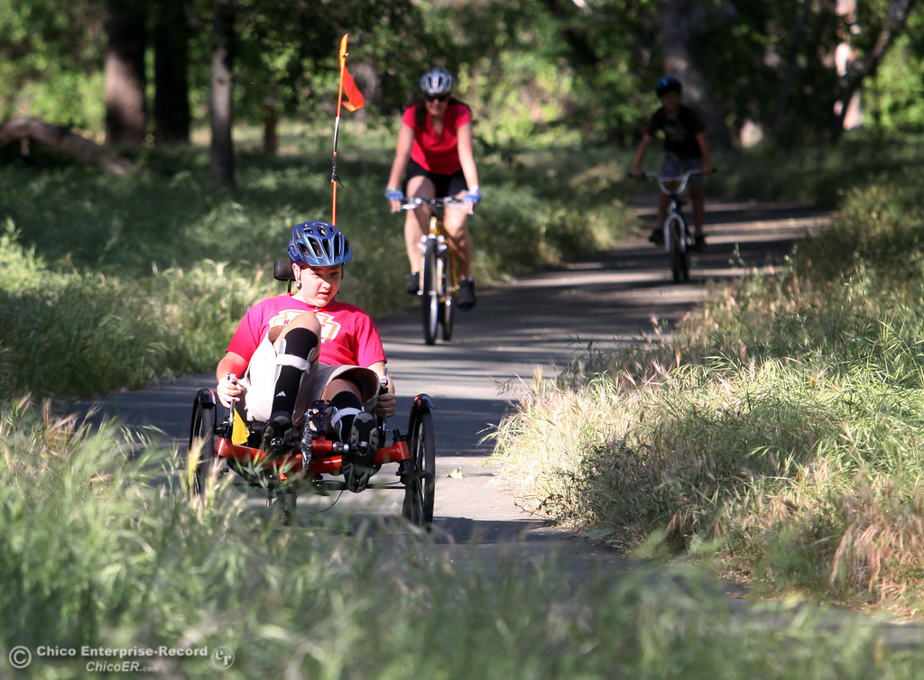 Description of . Conrad Hughes rides through lower Bidwell Park on April 24, 2013 in preparation for the Wildflower Bike Ride. Hughes has cerebral palsy and last had surgery, which cut his bones and stretched his muscles to correct his walking ability. He rides his bike working to have enough strength and stamina to ride 65 miles for the event this Sunday. (Jason Halley/Chico Enterprise-Record)