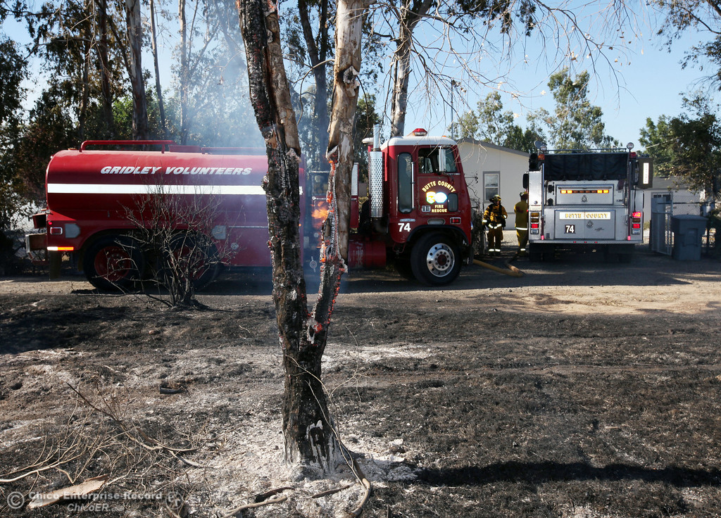 Description of . Cal Fire - Butte County firefighters battle a fire off Vineyard Lane Friday, July 12, 2013 in Oroville, Calif.  (Jason Halley/Chico Enterprise-Record)