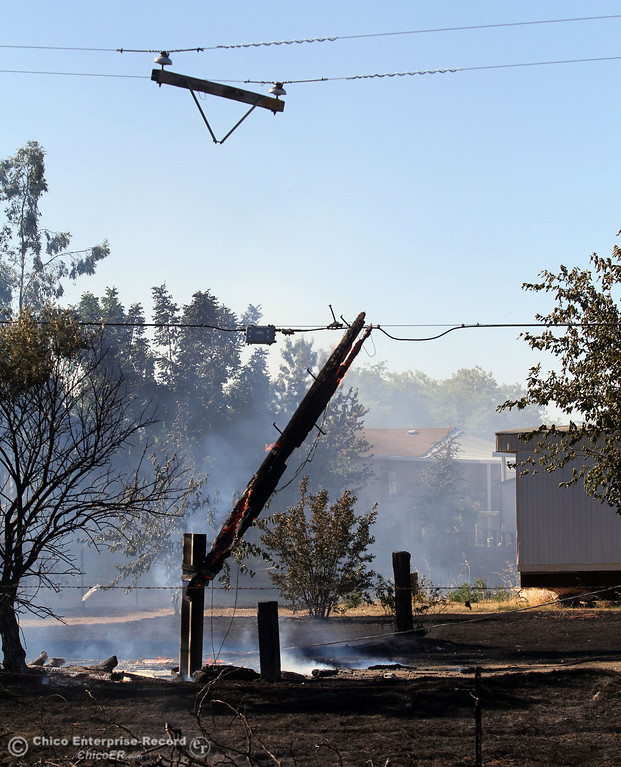 Description of . A power line pole hangs after it caught on fire and snapped the line while Cal Fire - Butte County firefighters battle a fire off Vineyard Lane Friday, July 12, 2013 in Oroville, Calif.  (Jason Halley/Chico Enterprise-Record)