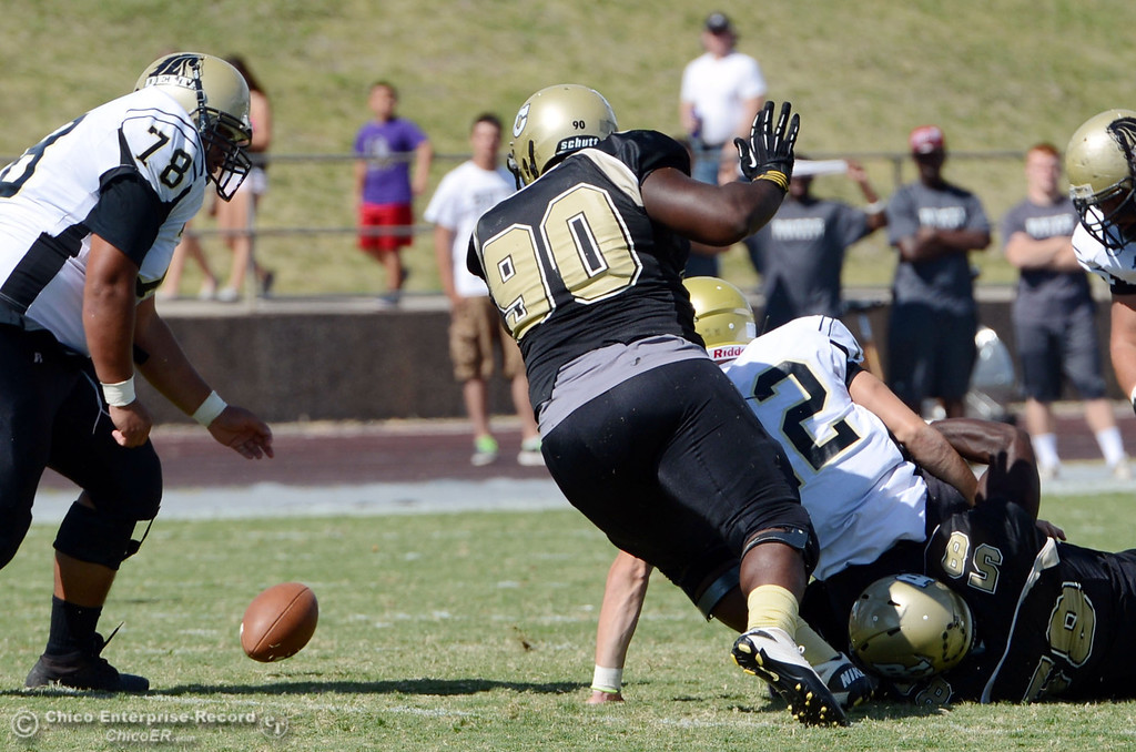 Description of . Butte College\'s #90 Stephen Francois (left) picks up a fumble force by #58 Sie Doe Jr. (bottom)  against Delta College\'s #12 Jeremy Mata (center) as #78 Macelo Hernandez (left) looks on in the first quarter of their football game at Butte\'s Cowan Stadium Saturday, September 28, 2013, in Oroville, Calif.  (Jason Halley/Chico Enterprise-Record)