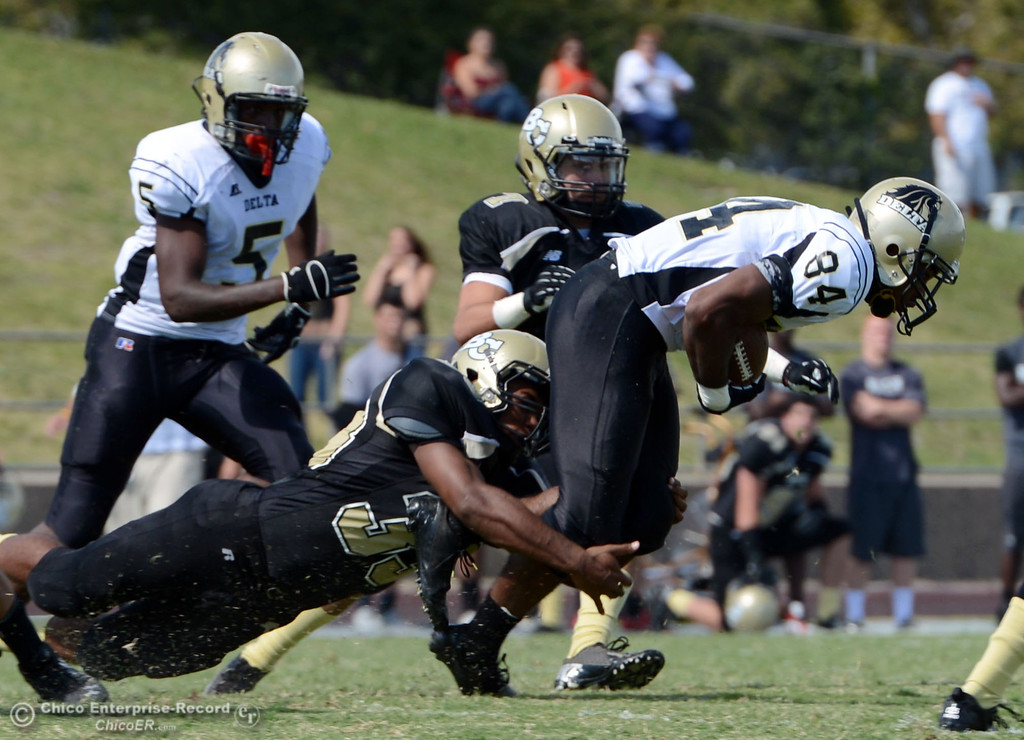 Description of . Butte College's #33 Jariah Booker (bottom) and #7 Ryan Holland (center) tackle against Delta College's #84 Damian Relierford (right) in the second quarter of their football game at Butte's Cowan Stadium Saturday, September 28, 2013, in Oroville, Calif.  (Jason Halley/Chico Enterprise-Record)