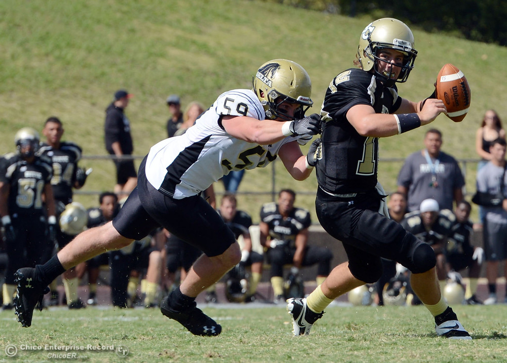 Description of . Butte College's #12 Thomas Stuart (right) is sacked against Delta College's #59 Nathan DiDonato (left) in the second quarter of their football game at Butte's Cowan Stadium Saturday, September 28, 2013, in Oroville, Calif.  (Jason Halley/Chico Enterprise-Record)