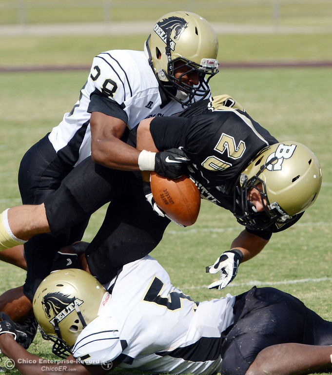 Description of . Butte College's #20 Armand Bokitch (center) is tackled against Delta College's #28 Robert Bivens (top) and #5 DaSahun Perkins (bottom) in the third quarter of their football game at Butte's Cowan Stadium Saturday, September 28, 2013, in Oroville, Calif.  (Jason Halley/Chico Enterprise-Record)