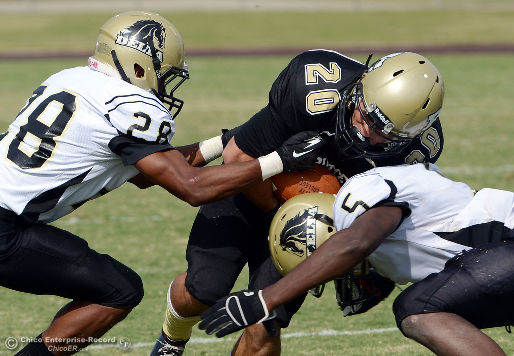 Description of . Butte College's #20 Armand Bokitch (center) is tackled against Delta College's #28 Robert Bivens (left) and #5 DaSahun Perkins (right) in the third quarter of their football game at Butte's Cowan Stadium Saturday, September 28, 2013, in Oroville, Calif.  (Jason Halley/Chico Enterprise-Record)