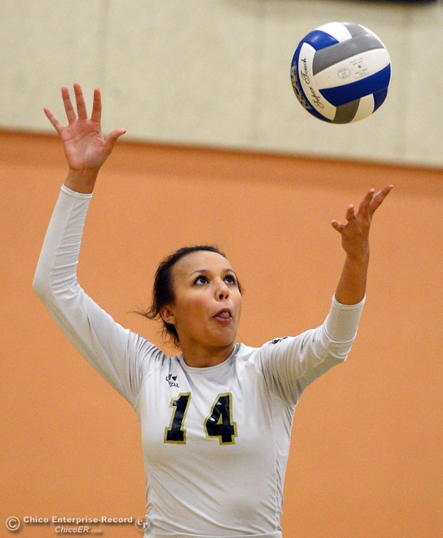 Description of . Butte College's #14 Gabby Delarosa serves against Sac City College in the first game of their women's volleyball match at Butte's Cowan Gym Wednesday, September 25, 2013, in Oroville, Calif.  (Jason Halley/Chico Enterprise-Record)
