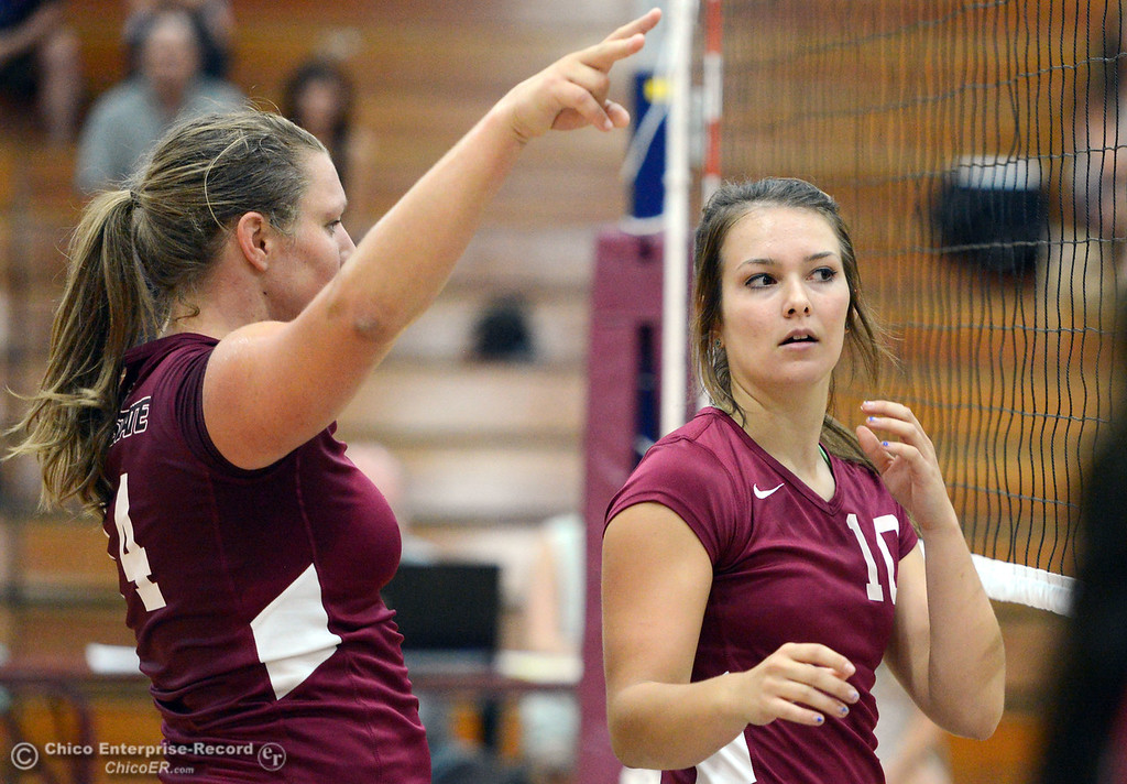 Description of . Chico State's #14 Alex Shurtz (left) and #10 Ashton Kershner (right) look on against Butte College in their volleyball game at CSUC Acker Gym Saturday, August 24, 2013 in Chico, Calif.  (Jason Halley/Chico Enterprise-Record)