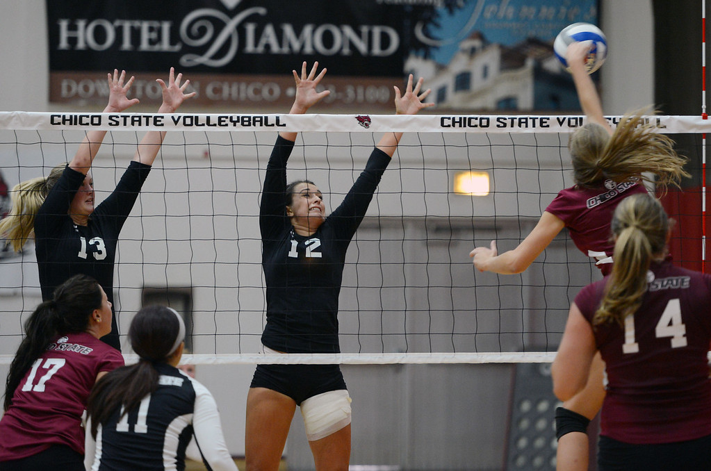 Description of . Butte College's #13 Emilie Aase (left) and #12 Callie Flood (center) attempt to block against Chico State's #4 Hannah Wilkins (right) in their volleyball game at CSUC Acker Gym Saturday, August 24, 2013 in Chico, Calif.  (Jason Halley/Chico Enterprise-Record)