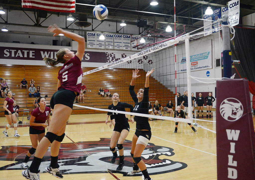 Description of . Chico State's #5 Lindsay Quigley (left) goes up for a spike against Butte College's #11 Brooke SIlverman (center) and #12 Callie Flood (right) in their volleyball game at CSUC Acker Gym Saturday, August 24, 2013 in Chico, Calif.  (Jason Halley/Chico Enterprise-Record)