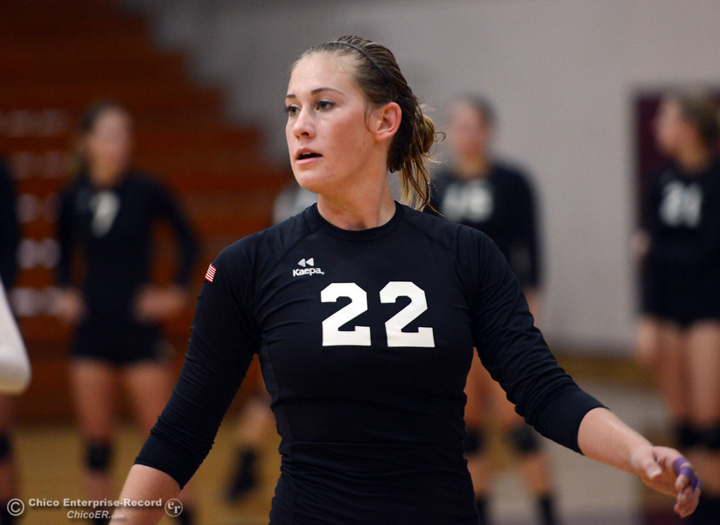 Description of . Butte College's #22 Courtney Robinson readies against Chico State in their volleyball game at CSUC Acker Gym Saturday, August 24, 2013 in Chico, Calif.  (Jason Halley/Chico Enterprise-Record)