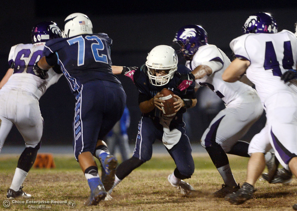 Description of . Pleasant Valley High\'s #12 Trent Darms (center) is tackled against Shasta High in the first quarter of their football game at PVHS Asgard Yard Friday, October 18, 2013 in Chico, Calif.  (Jason Halley/Chico Enterprise-Record)