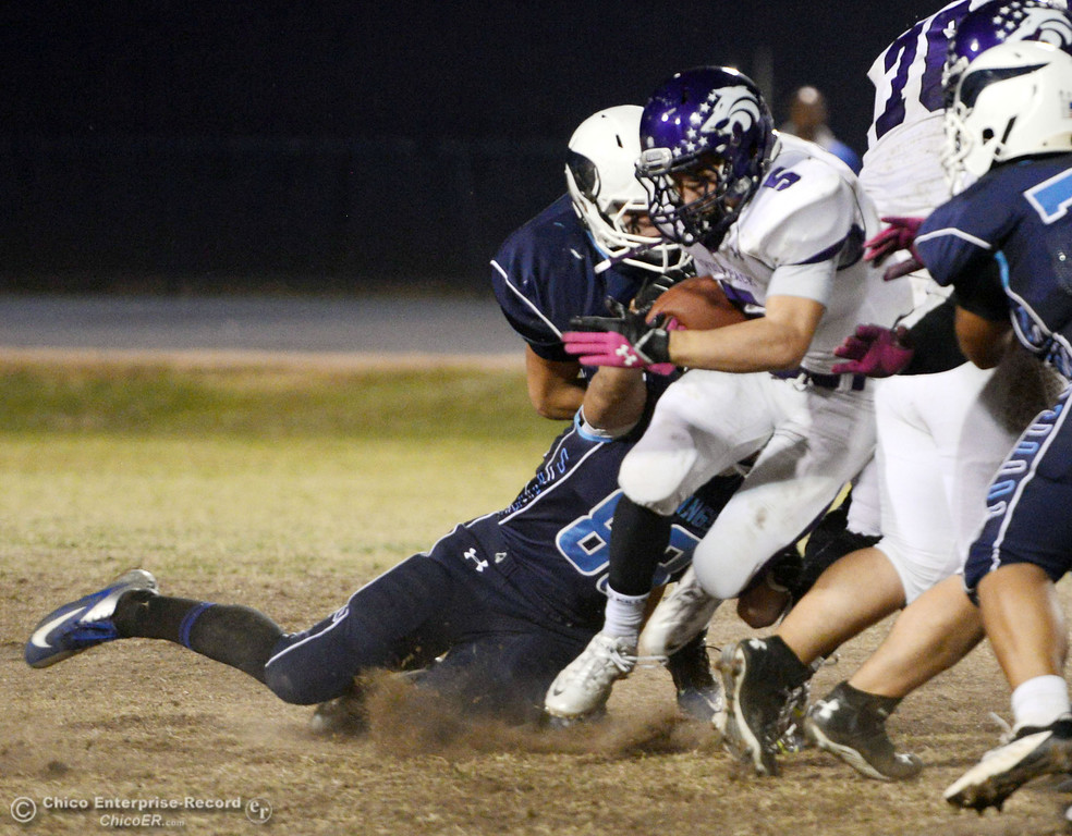 Description of . Pleasant Valley High\'s #88 Zack Suttles (left) tackles against Shasta High\'s #5 Jake Callaway (center) in the second quarter of their football game at PVHS Asgard Yard Friday, October 18, 2013 in Chico, Calif.  (Jason Halley/Chico Enterprise-Record)
