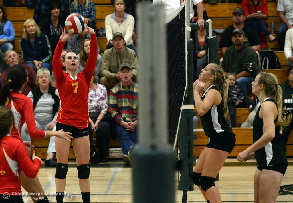 Description of . Chico High's #7 Allysa Barrett sets the ball against Paradise High in the second game of their girls volleyball match at PHS Thursday, October 10, 2013 in Paradise, Calif.  (Jason Halley/Chico Enterprise-Record)