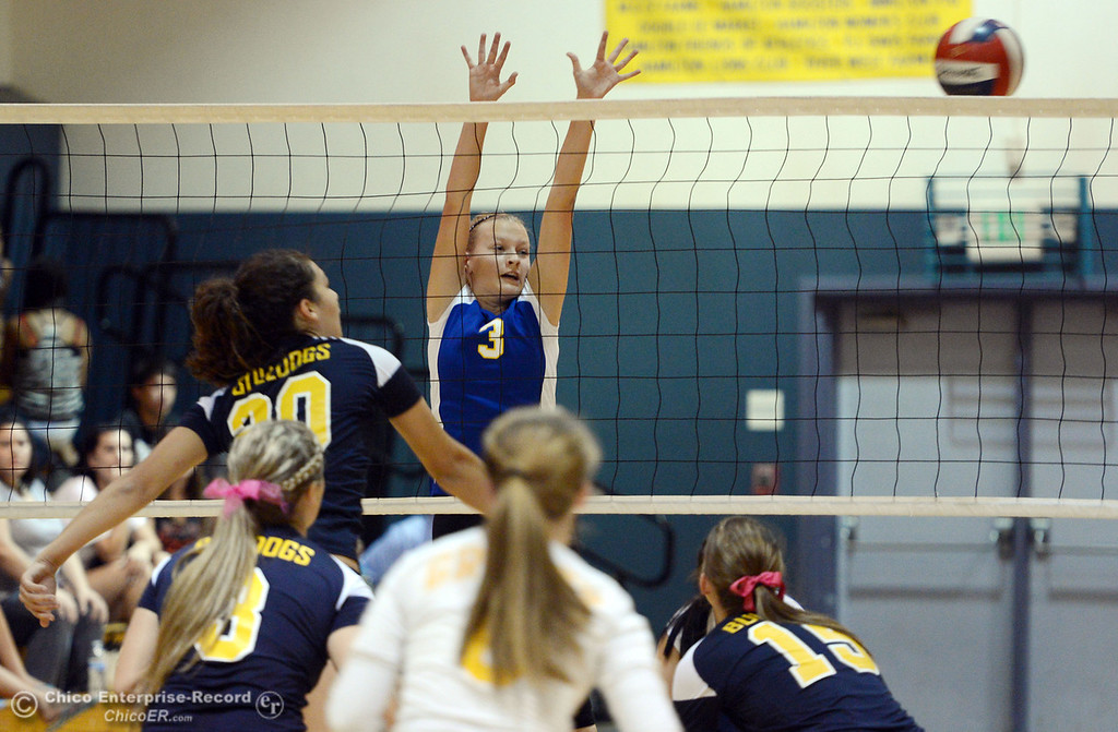 Description of . Hamilton High's #3 Kendra Gordon (right) is unable to block a spike against Gridley High's #20 Haylee Coats (left) in their first game of their volleyball match Thursday, August 29, 2013 in Chico, Calif.  (Jason Halley/Chico Enterprise-Record)
