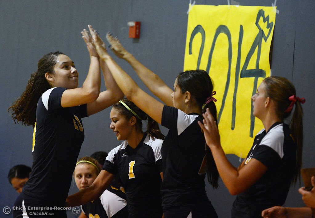 Description of . Hamilton High against Gridley High's #20 Haylee Coats (left) high-fives her team in their first game of their volleyball match Thursday, August 29, 2013 in Chico, Calif.  (Jason Halley/Chico Enterprise-Record)