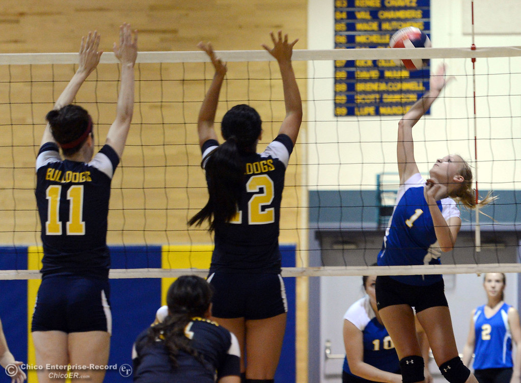 Description of . Hamilton High's #1 Nicole Gordon (right) spikes against Gridley High's #12 Lauren Solis (center) and #11 Elizabeth Osbourn (left) in their first game of their volleyball match Thursday, August 29, 2013 in Chico, Calif.  (Jason Halley/Chico Enterprise-Record)
