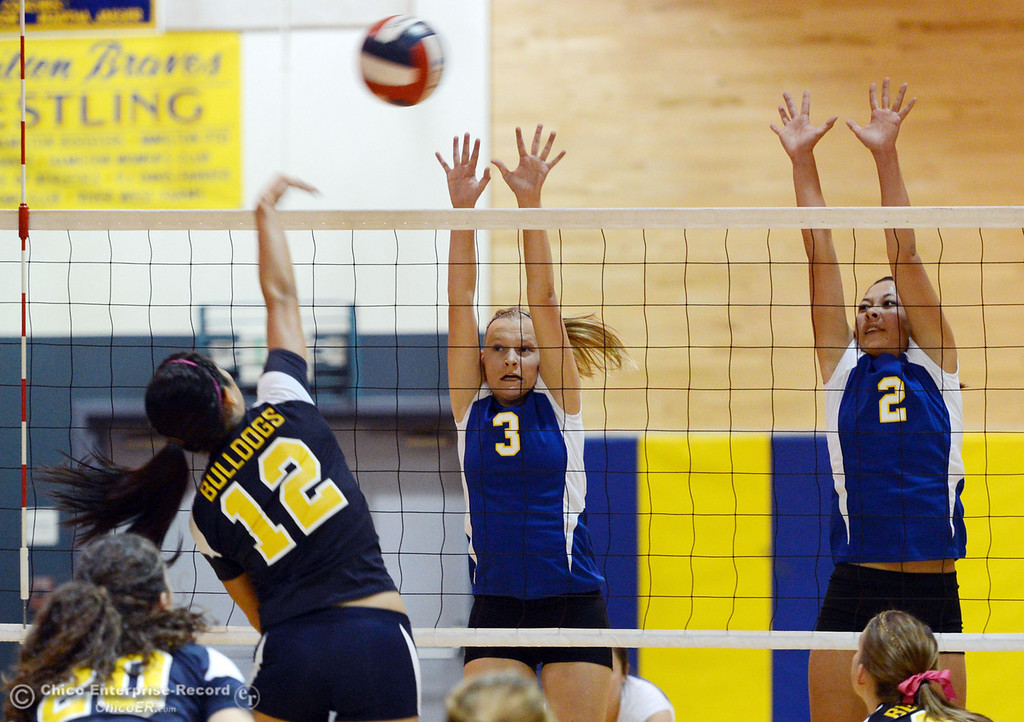 Description of . Gridley High's #12 Lauren Solis  (left) spikes the ball against Hamilton High's #3 Kendra Gordon (center) and #2 Raegan Avrit (right) in their first game of their volleyball match Thursday, August 29, 2013 in Chico, Calif.  (Jason Halley/Chico Enterprise-Record)