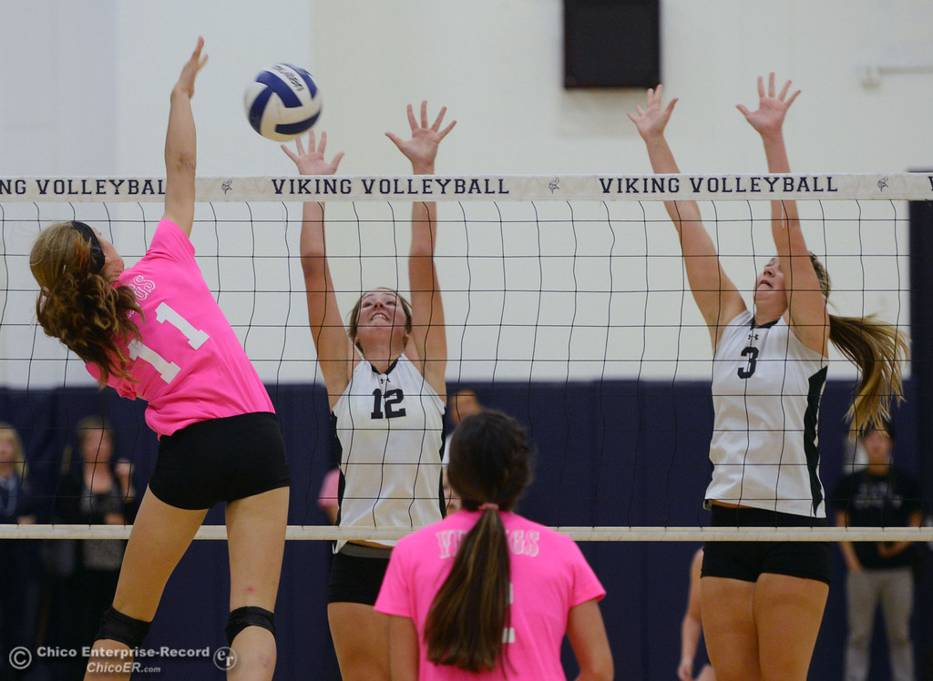 "Description of . Pleasant Valley High\'s #11 Heather Pembroke (left) spikes against Paradise High\'s #12 Mariah Mundt (center) and #3 Kelsi Earhart (right) in the second game of their volleyball match at PVHS Varley Gym Thursday, October 17, 2013 in Chico, Calif. PV volleyball wore pink instead of blue vs Paradise at ""Fight Like a Viking Night,\"" to raise money for cancer research. (Jason Halley/Chico Enterprise-Record)"