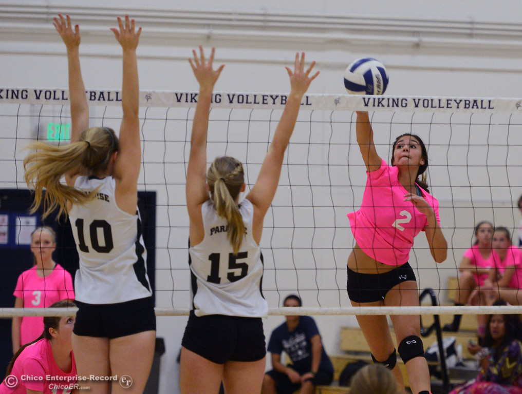 "Description of . Pleasant Valley High\'s #2 Lily Justine (right) spikes against Paradise High\'s #15 Emile Heinke (center) and #10 Larissa Knifong (left) in the second game of their volleyball match at PVHS Varley Gym Thursday, October 17, 2013 in Chico, Calif. PV volleyball wore pink instead of blue vs Paradise at ""Fight Like a Viking Night,\"" to raise money for cancer research. (Jason Halley/Chico Enterprise-Record)"