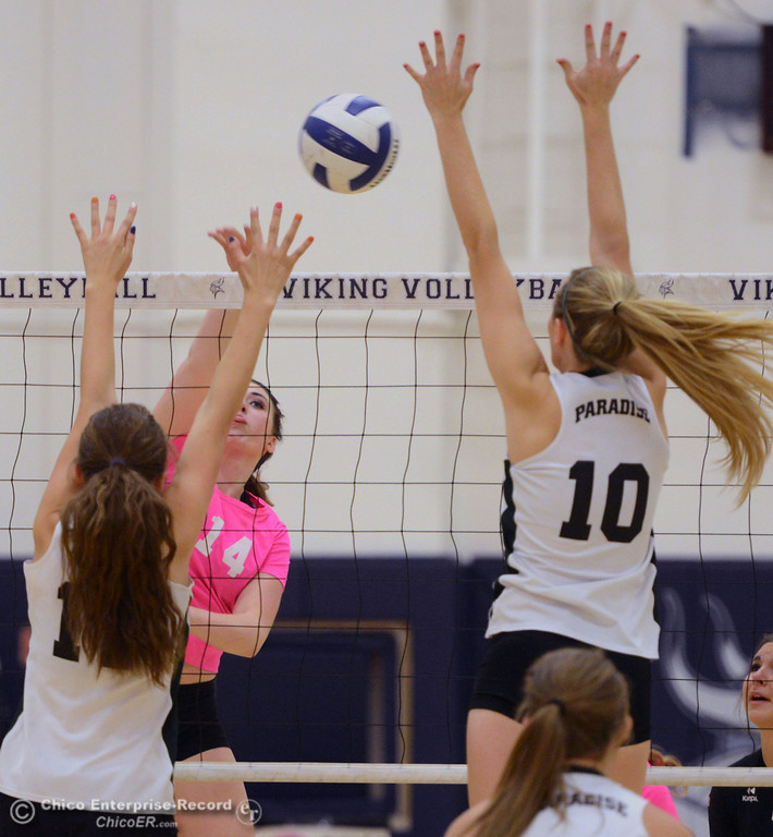 "Description of . Pleasant Valley Highs\' #14 Taylor Hovey (center) spikes against Paradise High\'s #11 Jennifer Olson (left) and #10 Larissa Knifong (right) in the second game of their volleyball match at PVHS Varley Gym Thursday, October 17, 2013 in Chico, Calif. PV volleyball wore pink instead of blue vs Paradise at ""Fight Like a Viking Night,\"" to raise money for cancer research. (Jason Halley/Chico Enterprise-Record)"