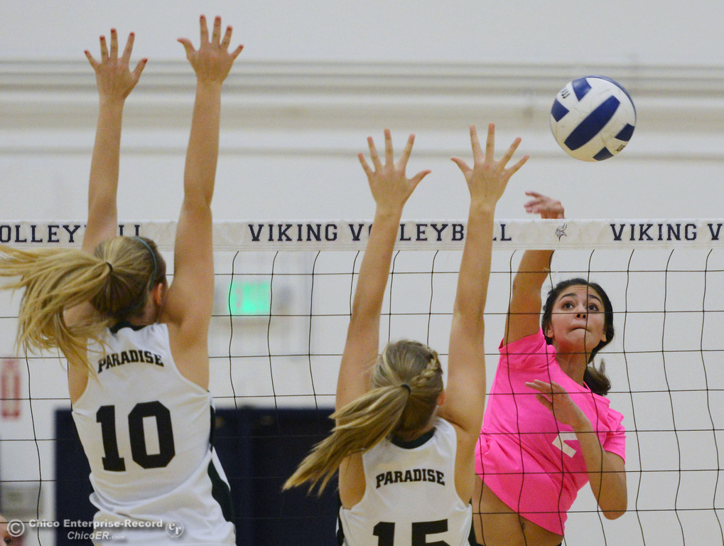 "Description of . Pleasant Valley High\'s #2 Lily Justine (right) spikes against Paradise High\'s #15 Emilee Heinke (center) and #10 Larissa Knifong (left) in the second game of their volleyball match at PVHS Varley Gym Thursday, October 17, 2013 in Chico, Calif. PV volleyball wore pink instead of blue vs Paradise at ""Fight Like a Viking Night,\"" to raise money for cancer research. (Jason Halley/Chico Enterprise-Record)"