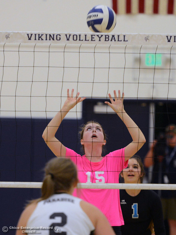 "Description of . Pleasant Valley High\'s #15 Sydney Stanley  against Paradise High in the second game of their volleyball match at PVHS Varley Gym Thursday, October 17, 2013 in Chico, Calif. PV volleyball wore pink instead of blue vs Paradise at ""Fight Like a Viking Night,\"" to raise money for cancer research. (Jason Halley/Chico Enterprise-Record)"