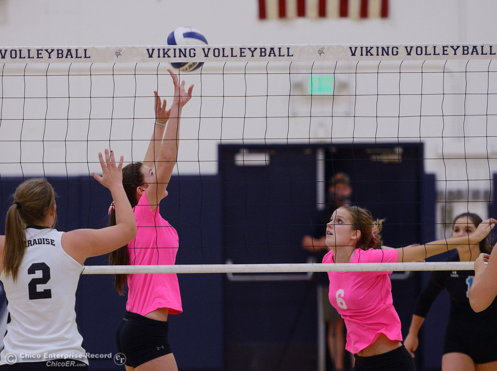 "Description of . Pleasant Valley High\'s #5 Kristian Joyce (left) sets for #6 Hanne Henriksen (right) against Paradise High in the second game of their volleyball match at PVHS Varley Gym Thursday, October 17, 2013 in Chico, Calif. PV volleyball wore pink instead of blue vs Paradise at ""Fight Like a Viking Night,\"" to raise money for cancer research. (Jason Halley/Chico Enterprise-Record)"