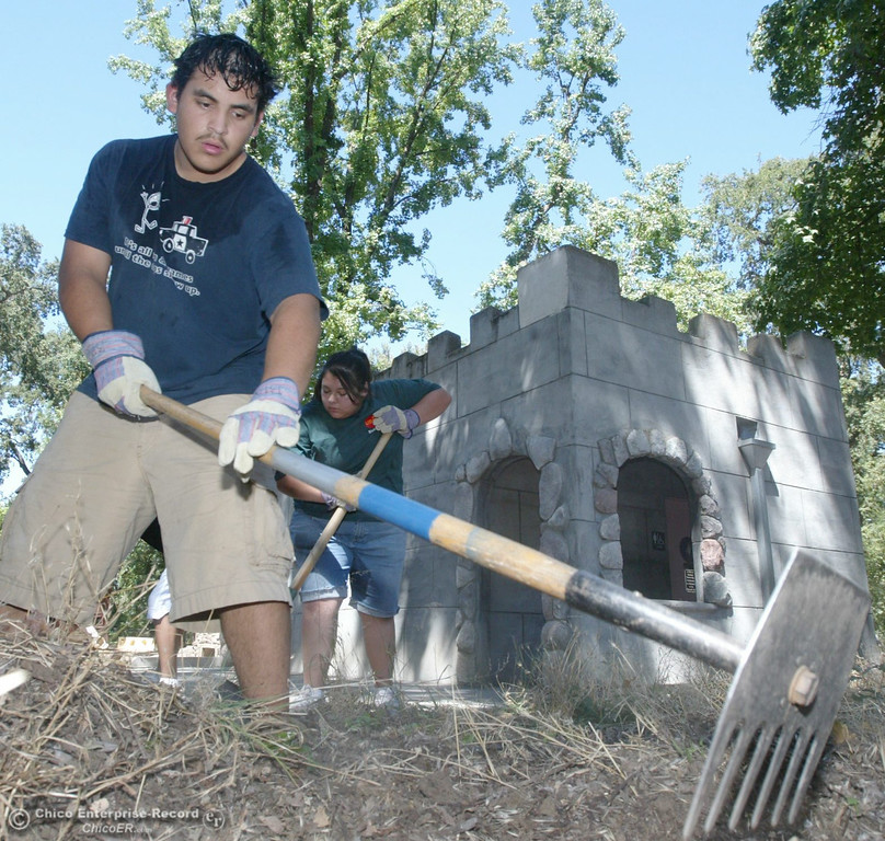 . Michael Navarro, of Biggs, clears weeds with other Chico State Upward Bound student volunteer at Caper Acres in this file photo from July 2007. (Bill Husa/Chico Enterprise-Record)