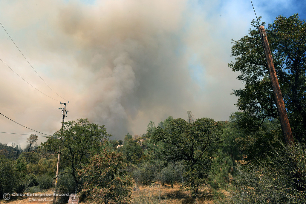 . The Swedes Fire can be seen along Swedes Flat Rd. as mandatory evacuation areas around the Swedes Fire southeast of Oroville were expanded just after noon Saturday, August 17, 2013 in Oroville, Calif.  (Jason Halley/Chico Enterprise-Record)
