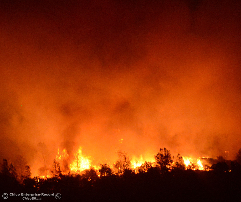 . The Swedes Fire burns into the night as seen from Oro Bangor Highway, in the vicinity of Chinese Wall Road and Swedes Flat Road Friday, August 16, 2013 in Oroville, Calif. Over 200 acres were burned with at least one structure lost. (Jason Halley/Chico Enterprise-Record)