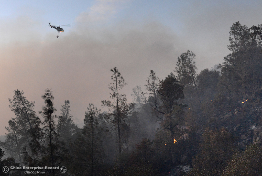 . A Cal Fire helicopter circles the Swedes Fire that burned along Swedes Flat Road, in the vicinity of Chinese Wall Road, just east or Oro Bangor Highway Friday, August 16, 2013 in Oroville, Calif. Over 200 acres were burned with at least one structure lost. (Jason Halley/Chico Enterprise-Record)