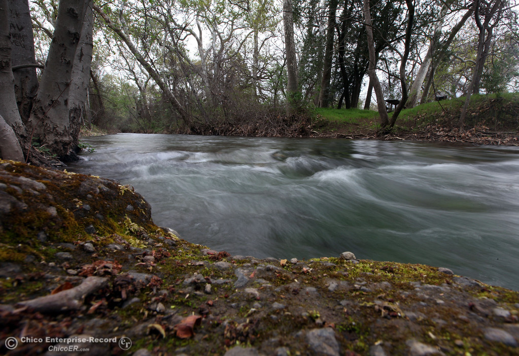. Rushing water of Big Chico Creek in lower Bidwell Park on the first day of Spring along on March 20, 2013 in Chico, Calif. (Jason Halley/Chico Enterprise-Record)