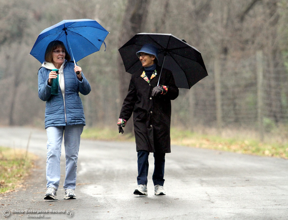 . Good friends, Sherri Faroky and Maureen Daley carry umbrellas in the rain as they enjoy one of several walks a week they do together in lower Bidwell Park on January 23, 2013. (Ty Barbour/Chico Enterprise-Record)