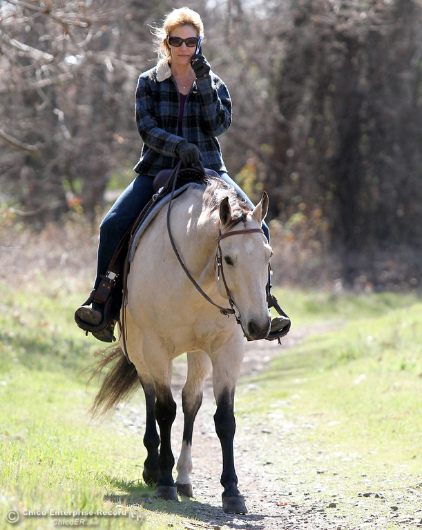""". Ceanne Johnson, of Chico, multi-tasks while riding her horse \""""Tucker\"""" through lower Bidwell Park on March 8, 2013. Johnson said she was handling a business phone call while enjoying the beautiful Spring weather during her ride. (Bill Husa/Staff Photo)"""