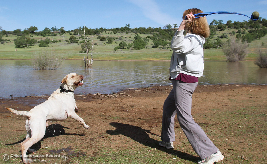 """. Susan Huggit, of Chico, throws a ball for \""""Max\"""" near Horseshoe Lake in upper Bidwell Park on March 26, 2013.  (Bill Husa/Staff Photo)"""