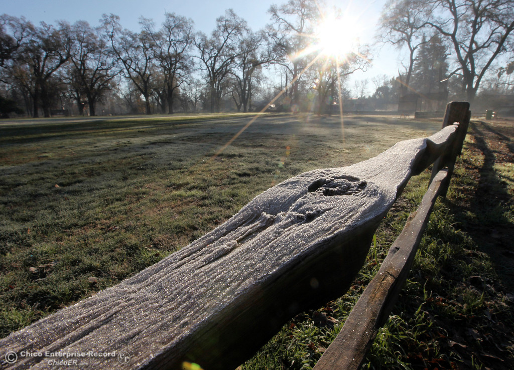 . Cold temperatures brought a small layer of frost into a fence at Sycamore Field at One Mile Recreation Area in lower Bidwell Park on December 27, 2012 in Chico, Calif. (Jason Halley/Enterprise-Record)